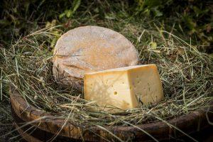 Azienda agricola formaggio vaccino biologico in Val di Fassa