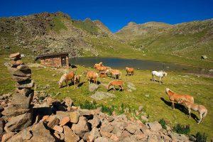 Vacanze estate Dolomiti Val di Fassa