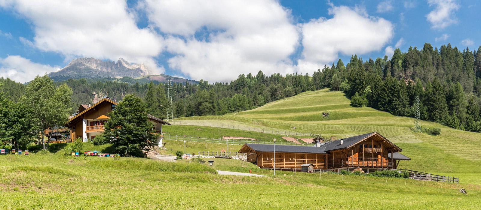 Bio Agritur Val di Fassa Ciasa dò Parè nelle Dolomiti