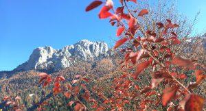 Autunno in Val di Fassa nelle Dolomiti di Casa dò Parè