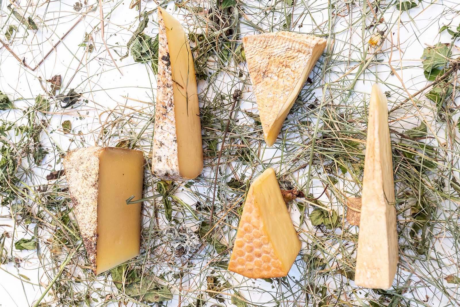 Formaggi Biologici con Latte Fieno di Vacche Grigio Alpina