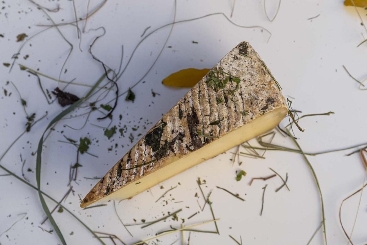 Formaggio Biologico di vacche autoctone di razza Grigio Alpina