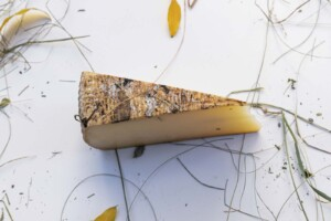 Formaggio prodotto con il latte fieno biologico della Val di Fassa