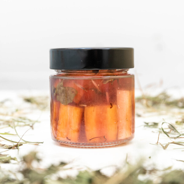 vasetto di carote e zucca fermentate
