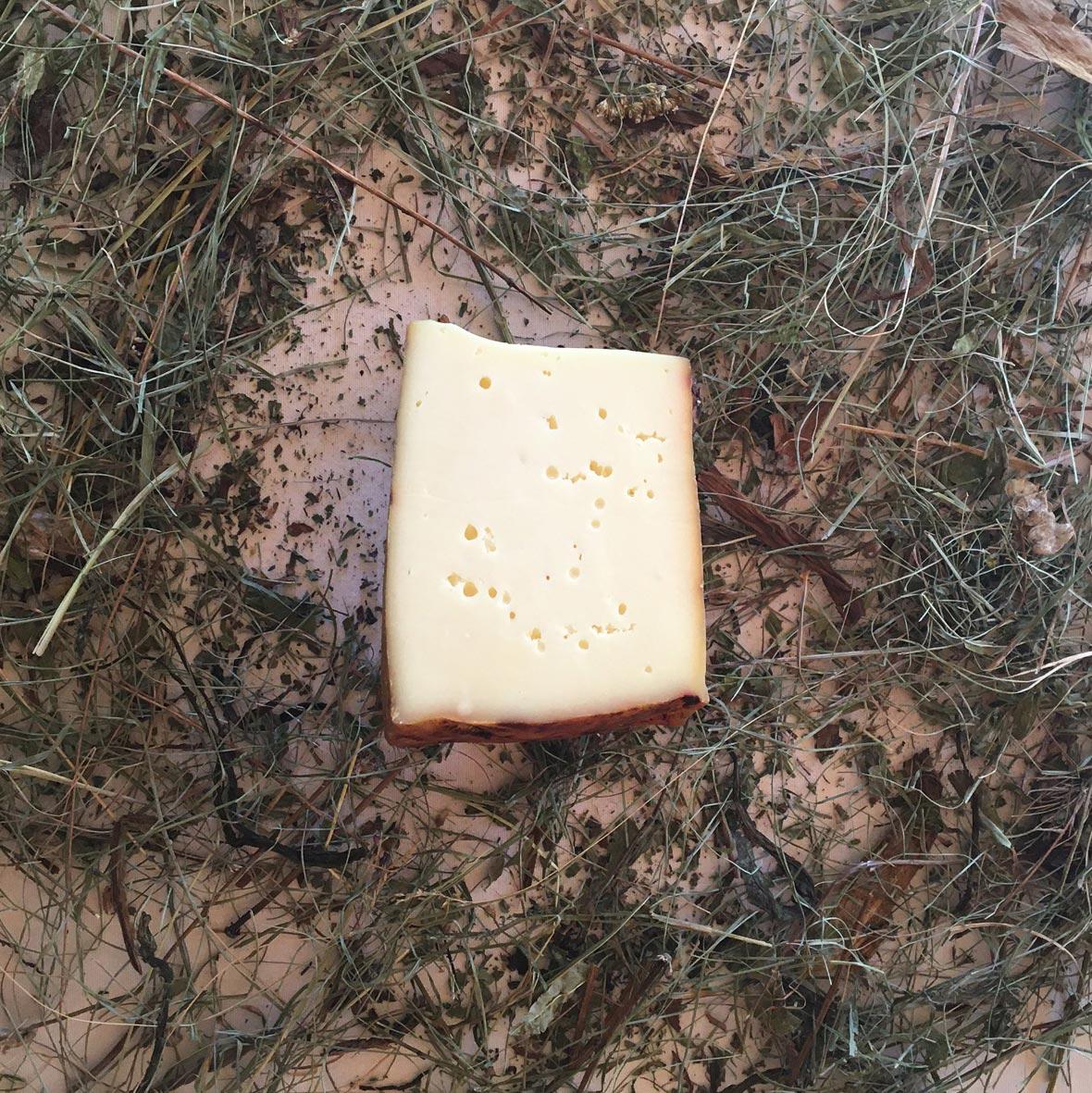 formaggio bio a crosta lavata